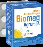 Lehning Biomag Comprimés à Croquer Agrumes B/90 à Lherm