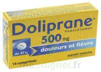 Doliprane 500 Mg Comprimés 2plq/8 (16) à Lherm