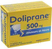 Doliprane 500 Mg Poudre Pour Solution Buvable En Sachet-dose B/12 à Lherm