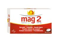 MAG 2 100 mg Comprimés B/60 à Lherm