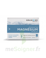 Granions De Magnesium 3,82 Mg/2 Ml S Buv 30amp/2ml à Lherm