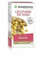 Arkogélules Lécithine de soja Caps Fl/45 à Lherm