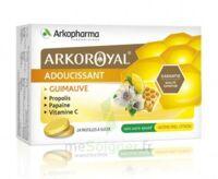 Arkoroyal Propolis Pastilles Adoucissante Gorge Guimauve Miel Citron B/24 à Lherm