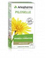 Arkogélules Piloselle Gélules Fl/45 à Lherm