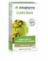 Arkogélules Garcinia Gélules Fl/45 à Lherm
