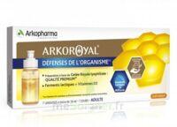 Arkoroyal Défenses Naturelles Gelée adulte 7 Doses/10ml à Lherm
