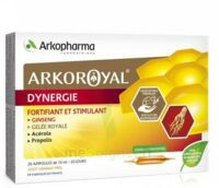 Arkoroyal Dynergie Ginseng Gelée Royale Propolis Solution Buvable 20 Ampoules/10ml à Lherm