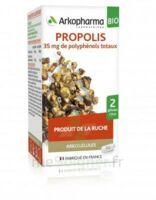 Arkogélules Propolis Bio Gélules Fl/45 à Lherm