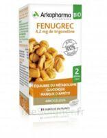 Arkogélules Fenugrec Bio Gélules Fl/40 à Lherm