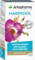 ARKOGELULES HARPAGOPHYTON Gélules Fl/150 à Lherm