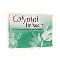 CALYPTOL INHALANT, émulsion pour inhalation par fumigation à Lherm