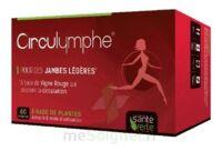 Santé Verte Circulymphe Triple Actions B/60 à Lherm