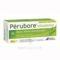 Perubore Caps Inhalation Par Vapeur Inhalation Plq/15 à Lherm