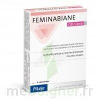 Feminabiane Cbu Flash Comprimés à Lherm