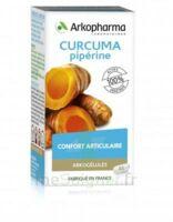 Arkogelules Curcuma Pipérine Gélules Fl/45 à Lherm