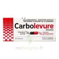 Carbolevure Gélules Adulte Plq/30 à Lherm