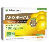 Arkoroyal Gelée Royale Bio 1500 Mg Solution Buvable 20 Ampoules/10ml à Lherm