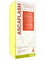 Ascaflash Spray anti-acariens 500ml à Lherm