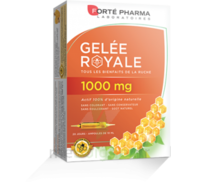 Forte Pharma Gelée royale 1000 mg Solution buvable 20 Ampoules/10ml à Lherm