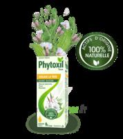 Phytoxil Toux Sans Sucre Sirop Adulte Enfant +2 Ans Fl/120ml à Lherm