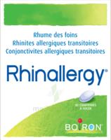 Boiron Rhinallergy Comprimés B/40 à Lherm