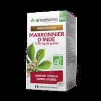 Arkogélules Marronnier D'inde Bio Gélules Fl/45 à Lherm