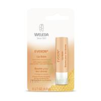 Weleda Soin Des Lèvres Everon® 4,8ml à Lherm