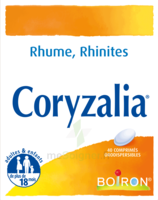 Boiron Coryzalia Comprimés orodispersibles à Lherm